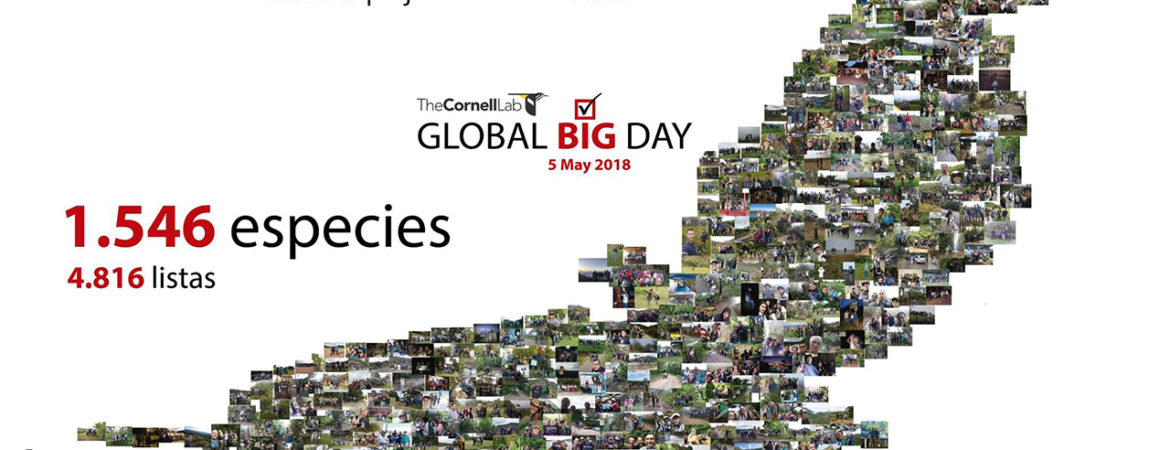 colombia-se-destaco-en-el-global-big-day
